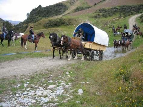 caval-cade-067