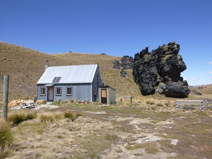 Image result for Meadow Hut in summer otago