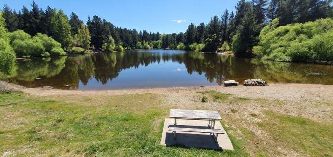 Pinders-Pond-Freedom-Camping-Lake-near-Roxburgh-4